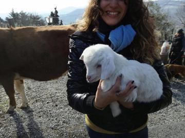 Benedizione degli animali. Festa di Sant'Antonio Abate