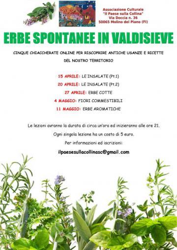 Erbe spontanee in Valdisieve. Martedì 27 aprile 2021