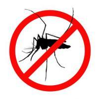 Operazioni di trattamento antilarvale per arginare il proliferare delle zanzare, in particolar modo della zanzara tigre