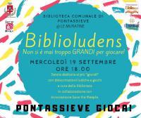 biblioludens